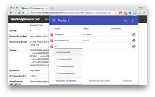 WebPウザいという方に贈るChromeでWebPをブロックする方法 ※ただし完全ではない