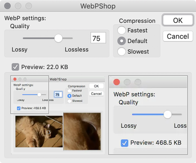 webp-options.png